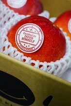 宮古産アップルマンゴー2kg「秀」(ご自宅用)