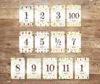 【Celebration】マンスリーカード・月齢カード(裏面に毎月の成長記録が残せるカード)