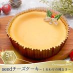 【2018クリスマスケーキ】seedチーズケーキ〜しあわせの種まき〜