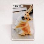 【1/28発売】柴犬そら アクリルスタンドD