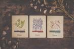 自由帳3冊セット 罫線なしノート シルクスクリーン 【送料無料】
