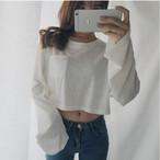 ショート丈 ゆる長袖 Tシャツ 2カラー lt105