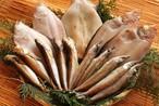 日本海干物セット (5種セット)