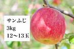 サンふじA品 約3㎏(12~13玉入り)