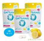 携帯する歯みがきタブレット 「CAMUGAKI カムガキ」3個入り