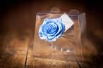 【花の誕生日プレゼント】プリザーブドフラワー/Jewel Ring-誕生日カラー-3月