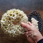 小さな白い花のリース /デイジー