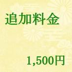 追加料金1500円