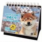 【日めくり】しばいぬ写真集カレンダー