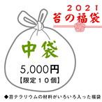 2021苔の福袋(中袋) ◆苔テラリウムの材料がいろいろ入った福袋