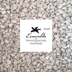 パナマ エスメラルダ農園 ゲイシャ 生豆 プライベートコレクション 2020年度 ウォッシュトプロセス  1kg