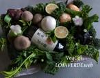 京野菜アレンジメント(M)+黒豆ぽん酢
