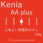 ケニア AA plus【シティ】100g