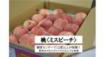 【福島県】桃(ミスピーチ) 20玉入