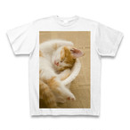 子猫のTシャツ4【送料無料】