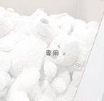 makiko様専用出品◆オプション