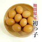 白鳳卵「初っ子」50個入