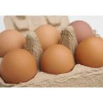 H.平飼い卵(6個入り×3パック)合計18個