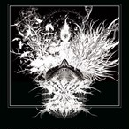 【DISTRO】Disease of the Fade / Withdrawl