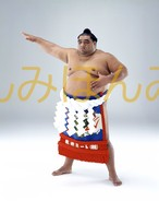 平成14年5月場所優勝 横綱 武蔵丸光洋関(11回目の優勝)
