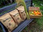 一番お得。愛足る自然栽培米★30キロ★特典「ワカヤマ・フルーツ」一箱付き!
