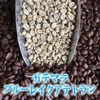 ブルーレイク アテトラン(ガテマラ)生豆240gを焙煎