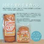 【送料無料定期便】国産小麦の玄米食パン10本セット