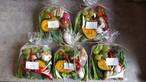 京野菜mini×5
