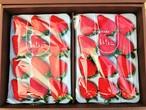 大粒!!完熟☆濃く甘いちご 紅ほっぺ  24粒