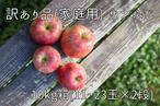 サンふじ 家庭用(訳あり) 10㎏(11~23玉×2段) 長野県産 りんご