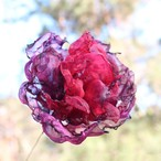 赤いバラ カラフルオーガンジーのアートフラワー【造花】