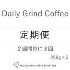 【定期便3回/2週間毎】選べる! Daily Grind Coffee 250g×2個セット