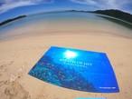 オリジナルビーチタオル「Coral2019」Lサイズ