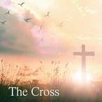 The Cross - 中山有太(4th Album)