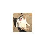 「ヤバい顔の猫」アクリルスタンド