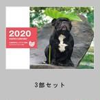 3冊セット ワンコカレンダー2020