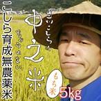 こしら育成無農薬米 立川こしらの中之米(ちゅうのまい)※もち米5㎏