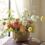 春の花だより