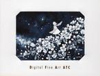DFA ATC | トヨダイズミ ③ 『ユキヤナギ銀河』