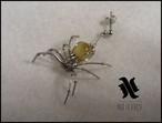 蜘蛛 ピアス ゴールデンタイガーアイ