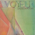 David Sanborn / Voyeur (LP)