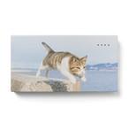 飛び猫モバイルバッテリー