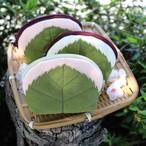ふんわり桜餅ポーチ/Sサイズ