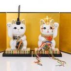 雛人形 招き猫セット / M-Size / 白(White)