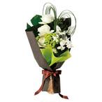 【花のギフト・プレゼント】LB-02 花束 ホワイト×グリーン