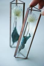 ◆抽選◆お在庫2点・△植物標本:プリザーブドフラワー〚クレマチス ブルー〛