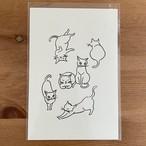 猫の絵描き mai ☆ 絵葉書(モノクロ)