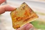 悠久の琥珀★ボルネオ産★大きなアンバー原石 amber005
