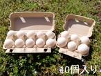 合鴨卵 10個入り