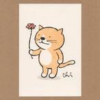 にゃんきーとすポストカード お花どうぞ